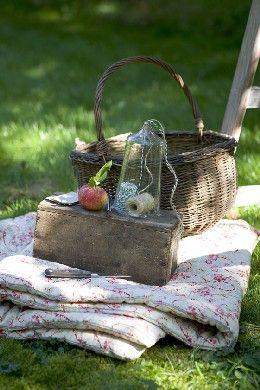 Basket in the yard.