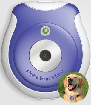 Pet's eye view