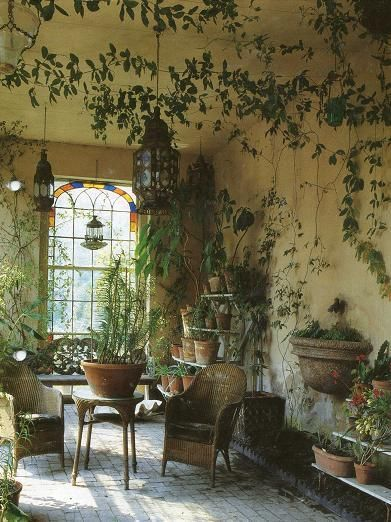 plants and stained glass window- wonderful.