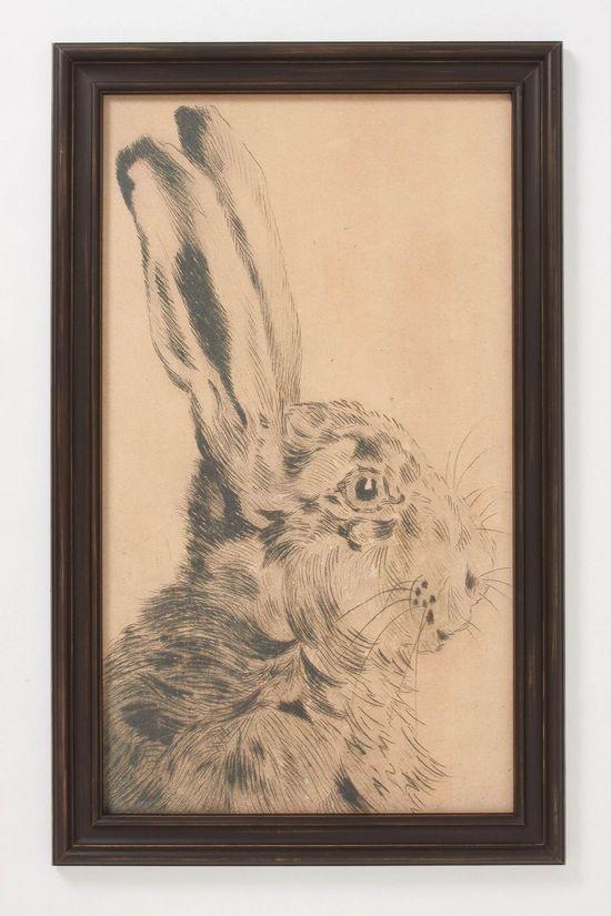 Rabbit Profile Framed Art - Anthropologie.com