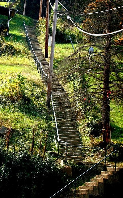 Heart Attack Hill - 138 steps - In Sutton West Virginia