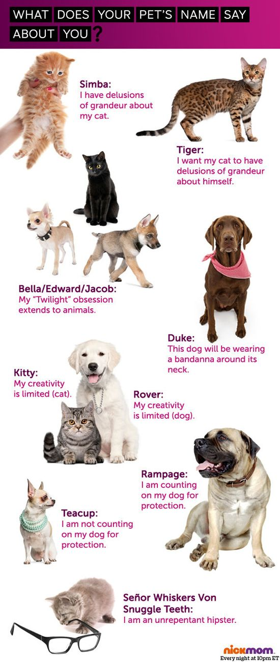 What does your pet's name say about you?
