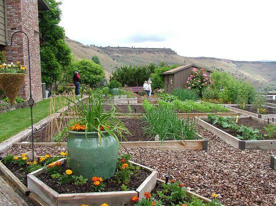 Raised bed vegetable garden, Oregon