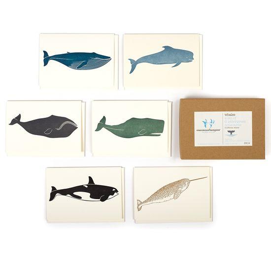 Whales Box Set//