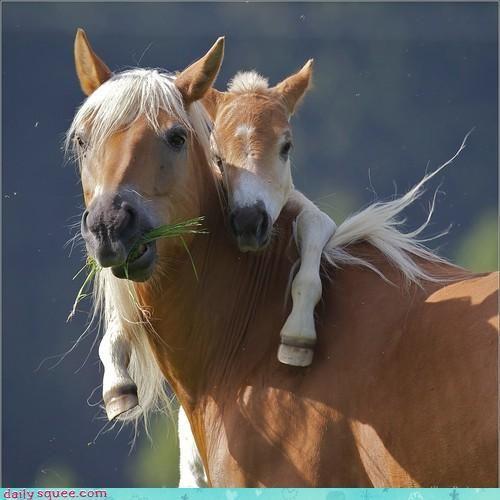 I love you Mama!