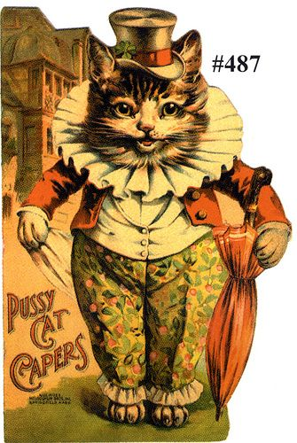 Pussy Cat Capers Book Cover