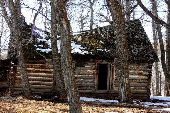 Settlers Dream House