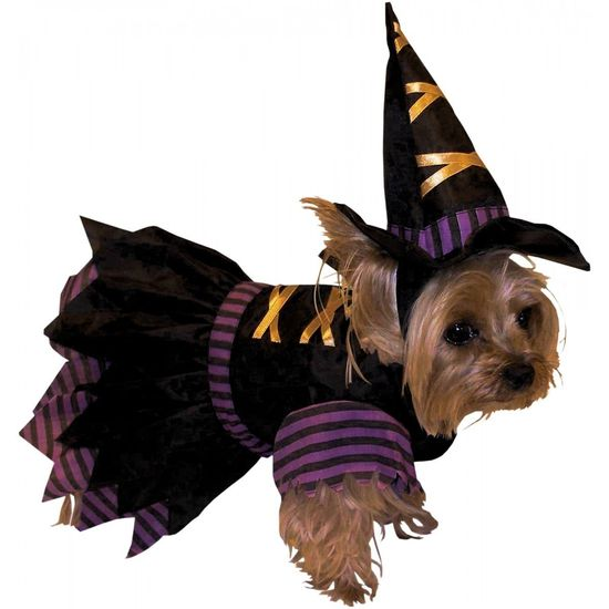 Forum Wicked Witch Puppy Dog Cute Pet Halloween Costume