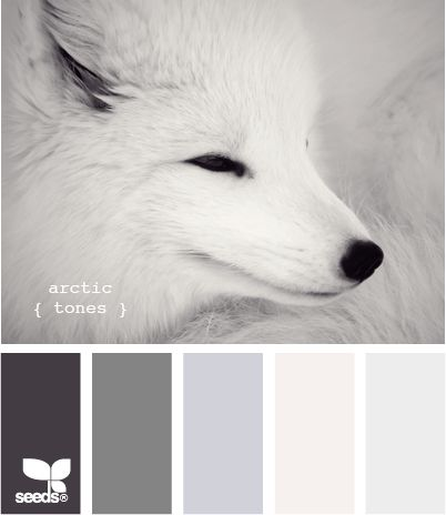 arctic tones - design seeds