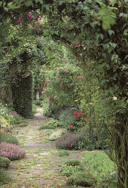A lovely garden path....