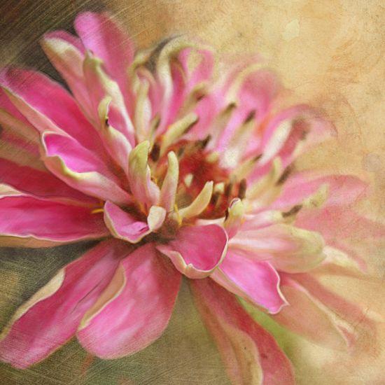 Flower Art Print.