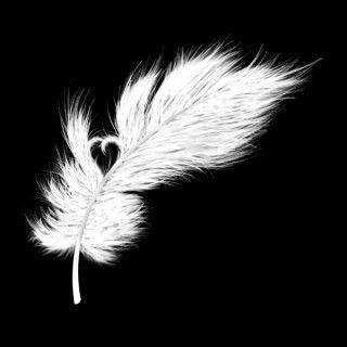 This would be adorable as a white ink tattoo.