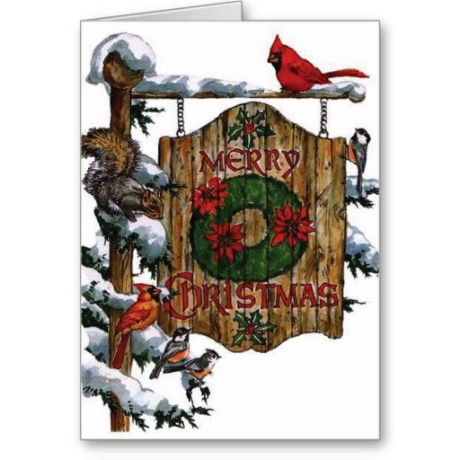 Cardinals Christmas Vintage greeting Cards