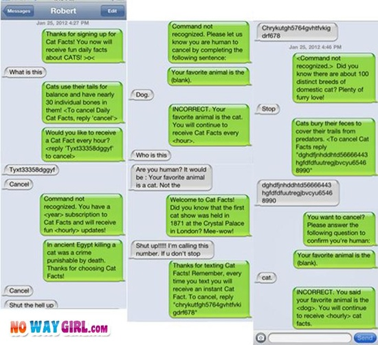 Funny Cat Facts Text Message - NoWayGirl