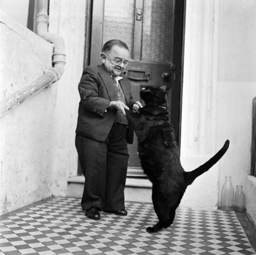 1956: Henry Behrens, the smallest man, dances with his pet cat in the doorway of their Worthing home.