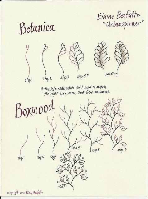 (2011-10) Botanica & Boxwood
