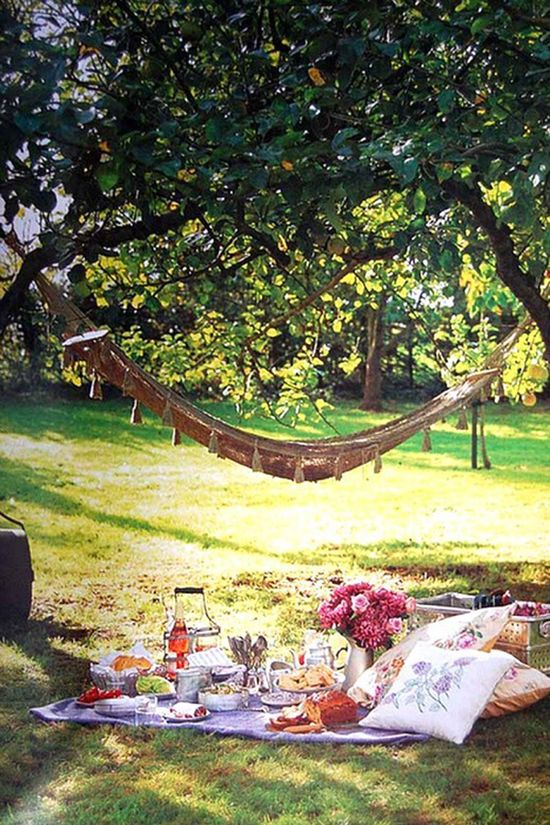 a nice, romantic picnic date. That's what I want. And I really like the hammock idea......Having the picnic in the back of a pickup truck parked in a field with pretty flowers or by a lake would be more ideal to avoid ants and stuff.