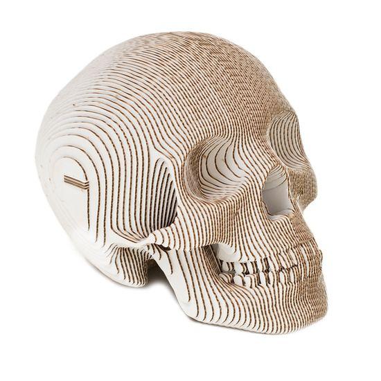 Vince Human Skull SE White