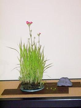 Tree-Haven School of Bonsai  Art of Kusamono