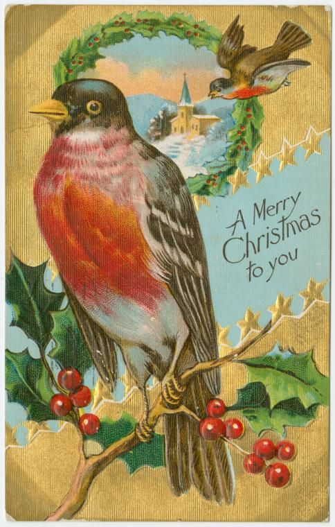 A merry Christmas to you. #birds #vintage #Christmas #cards
