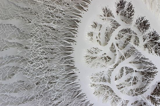 Artist Rogan Brown spends upward of five months cutting one of his organic forms from dozens of sheets of paper.   See many more works on Colossal:  www.thisiscolossa...