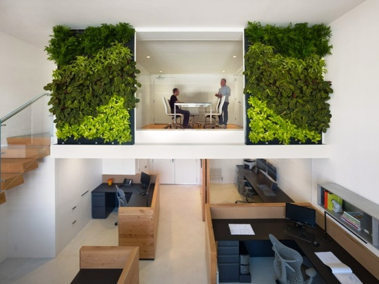 cool open/separate office spaces + green wall!