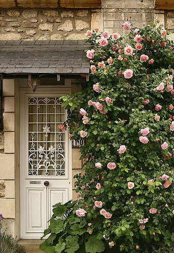 Love this door and the roses