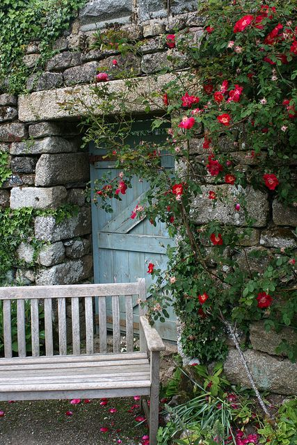 cottage and roses