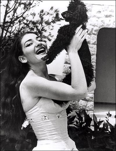 Maria Callas   #celebrities #pets #Dogs
