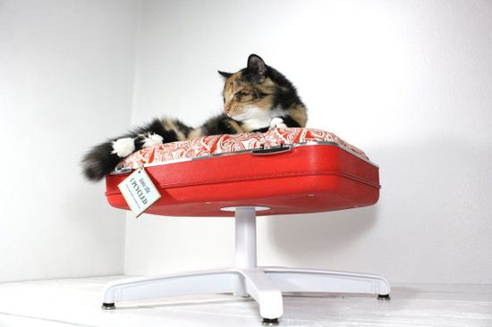 upcycled suitcase pet bed