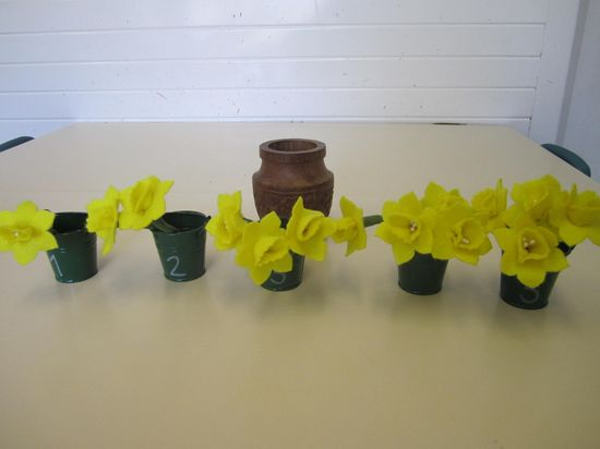 Counting hand made felt daffodils