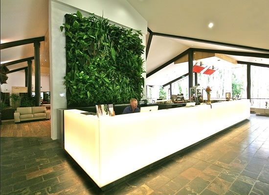 A living wall behind reception available through Design and Specify, office design, office furniture, Leeds, Yorkshire, reception desk, reception furniture,