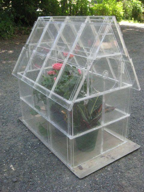 Frugal DIY: CD Case Greenhouse