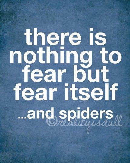 So true. Ew, spiders.