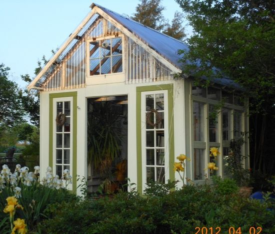 greenhouse made using old windows and french doors