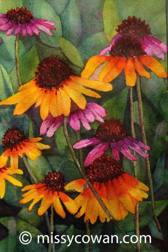 ORANGE CONEFLOWERS - Giclee Print of Original Watercolor Painting