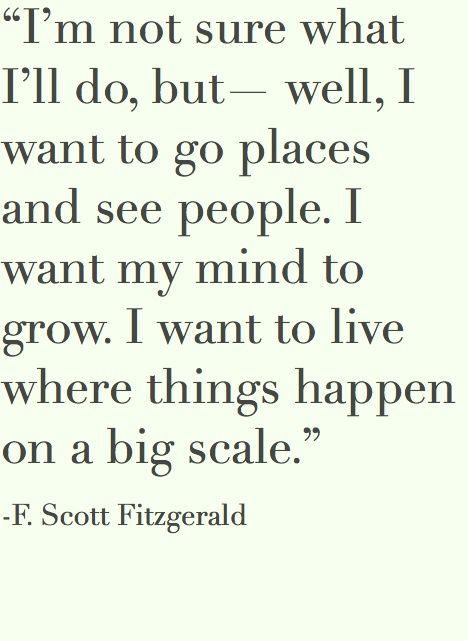 -F. Scott Fitzgerald