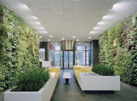 Garden Interior VET!