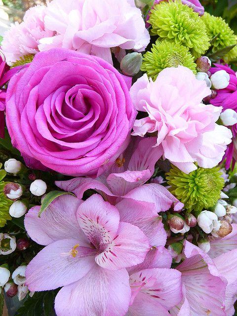 `Flowers