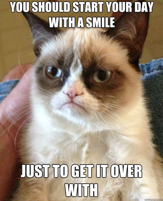 Just think of Grumpy Cat when you wake up