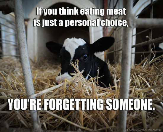 Everyone holds the power to SAVE a life or TAKE a life when they choose a meal. Which one do YOU choose? #animals #vegan #govegan #animalrights