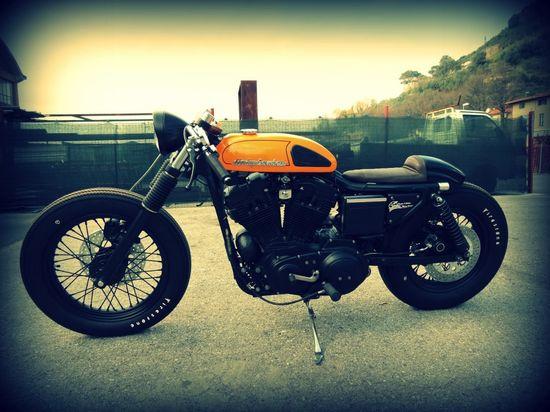 Harley Café Racer.