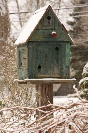 It's amazing what just a little bit of color and structure will do to make winter oh-so-much-more attractive. This rustic birdhouse, besides attracting feathered friends to this garden, turns a shrub in the snow into a charming little vignette.
