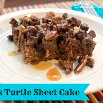 Texas Turtle Sheet Cake Recipe