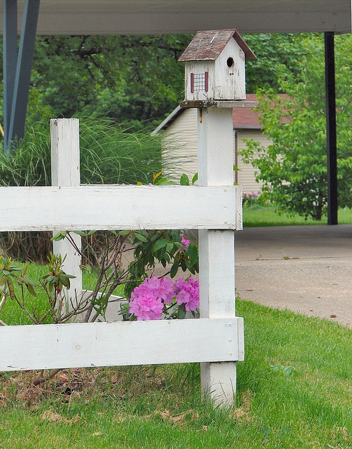 Bird house on a fence post - clever