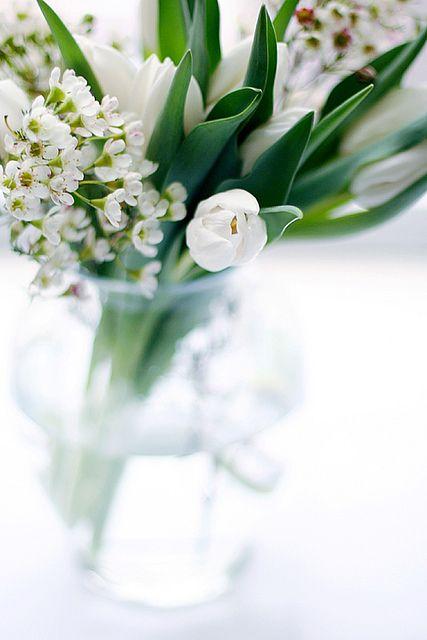 ... fresh white spring flower bouquet