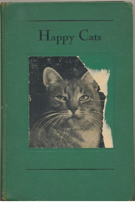 limilee:    Happy Cats via janwillemsen on fickr