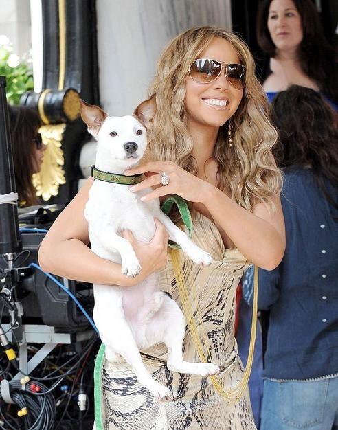 Celebrities with Animals
