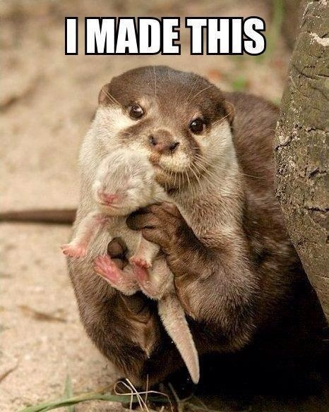 Otter and baby... Cute