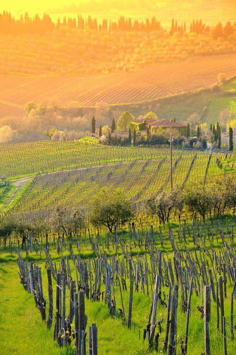 Amazing Chianti landscape in Tuscany